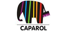 caparol ის საღებავი. წარმომადგენლობა საქართველოში. (1)