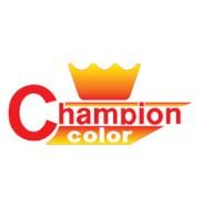 Champion სპრეი საღებავები